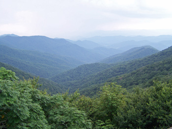 My words grow from the Blue Ridge Mountains that rise all around me.  This photo was taken driving through Western North Carolina, on my way to Mount Mitchell.